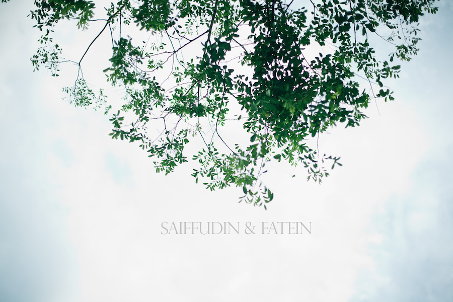 saiffudin & fatein / reception
